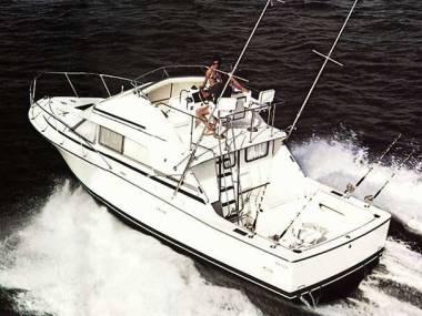 Bertram 33 Sport Fisherman
