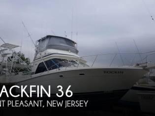 Blackfin 36 Convertible