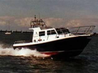 Cygnus Cyclone 30 Patrol