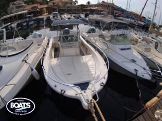 WHITE SHARK KELT SA WHITE SHARK 205 HY45206