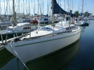 GILBERT MARINE GIB SEA 31 EB43582