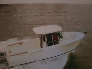 JEANNEAU Modelo MERRY FISHER 655 MERLIN