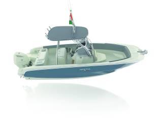 Invictus 240 FX Fisher