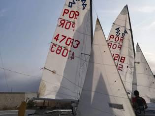 420 Ziegelmayer POR50859
