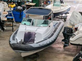 Rayglass Protector 8.5 Cabin