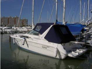 Sea Ray 310