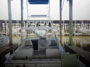 Luhrs 290 Open Sportfisher