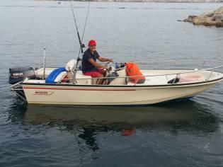 Boston whaler 15