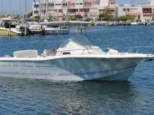 White Shark 248