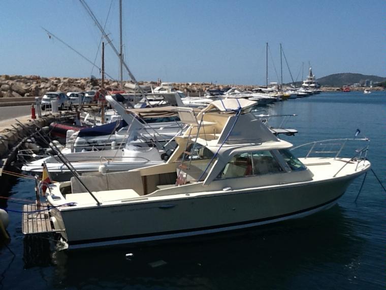 riva bertram 25 sport fisherman en puerto portals bateaux moteur d 39 occasion 55485 inautia. Black Bedroom Furniture Sets. Home Design Ideas