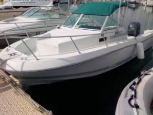 sea hawk 216 WA