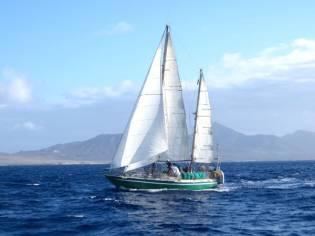 Custom Caroff Galapagos 43