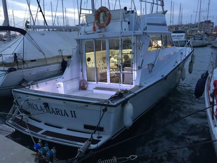 bateau de peche viking