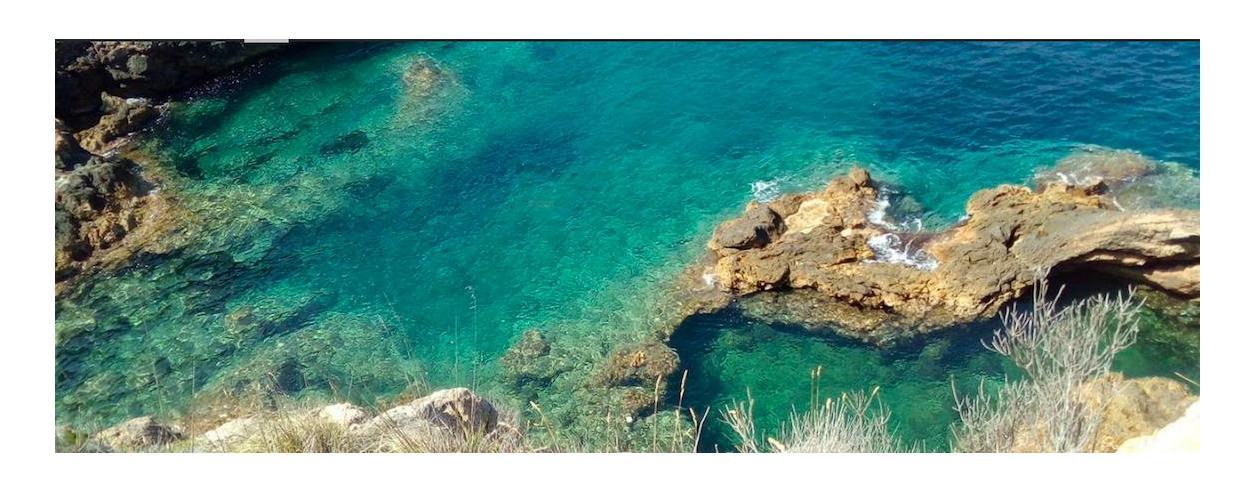 SEA DREAM Brokerage, Charters & Services Photo 1