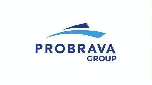 Logo de PROBRAVA GROUP