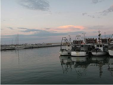 Marina di Porto San Giorgio Marcas